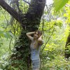 Алиса, 25, г.Новая Каховка