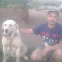 игорь, 37 лет, Лев, Великие Луки