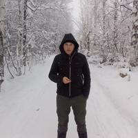 Николай, 40 лет, Овен, Пермь