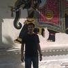 ахмед, 33, г.Ходжейли
