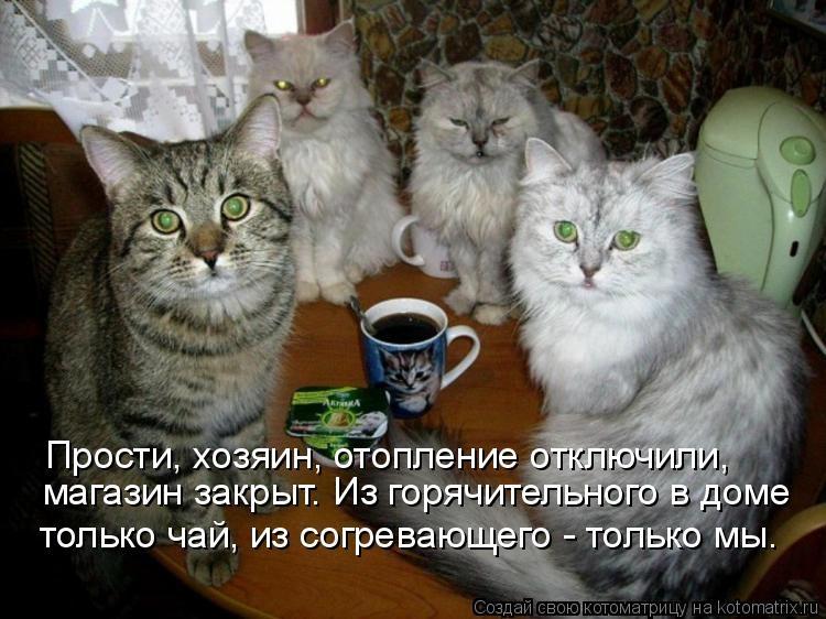 картинка с надписью приходи чаю попьем фотографии регулярно