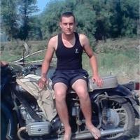 Рома, 29 лет, Рыбы, Миргород