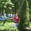 Ирина, 55, г.Ивантеевка