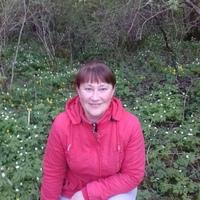 Людмила, 41 год, Рак, Великий Новгород (Новгород)