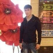 Samandar 29 Ташкент