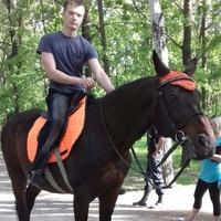 Николай, 27 лет, Рак, Запорожье