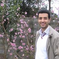 Ahmad, 43 года, Дева, Сари