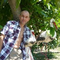 Олег, 52 года, Близнецы, Калуга