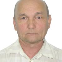владимир, 71 год, Дева, Дзержинск