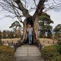 Denis, 29 лет, Овен, Сеул