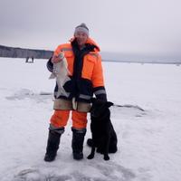 Дмитрий, 41 год, Рыбы, Екатеринбург