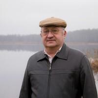 павел, 68 лет, Близнецы, Боровичи
