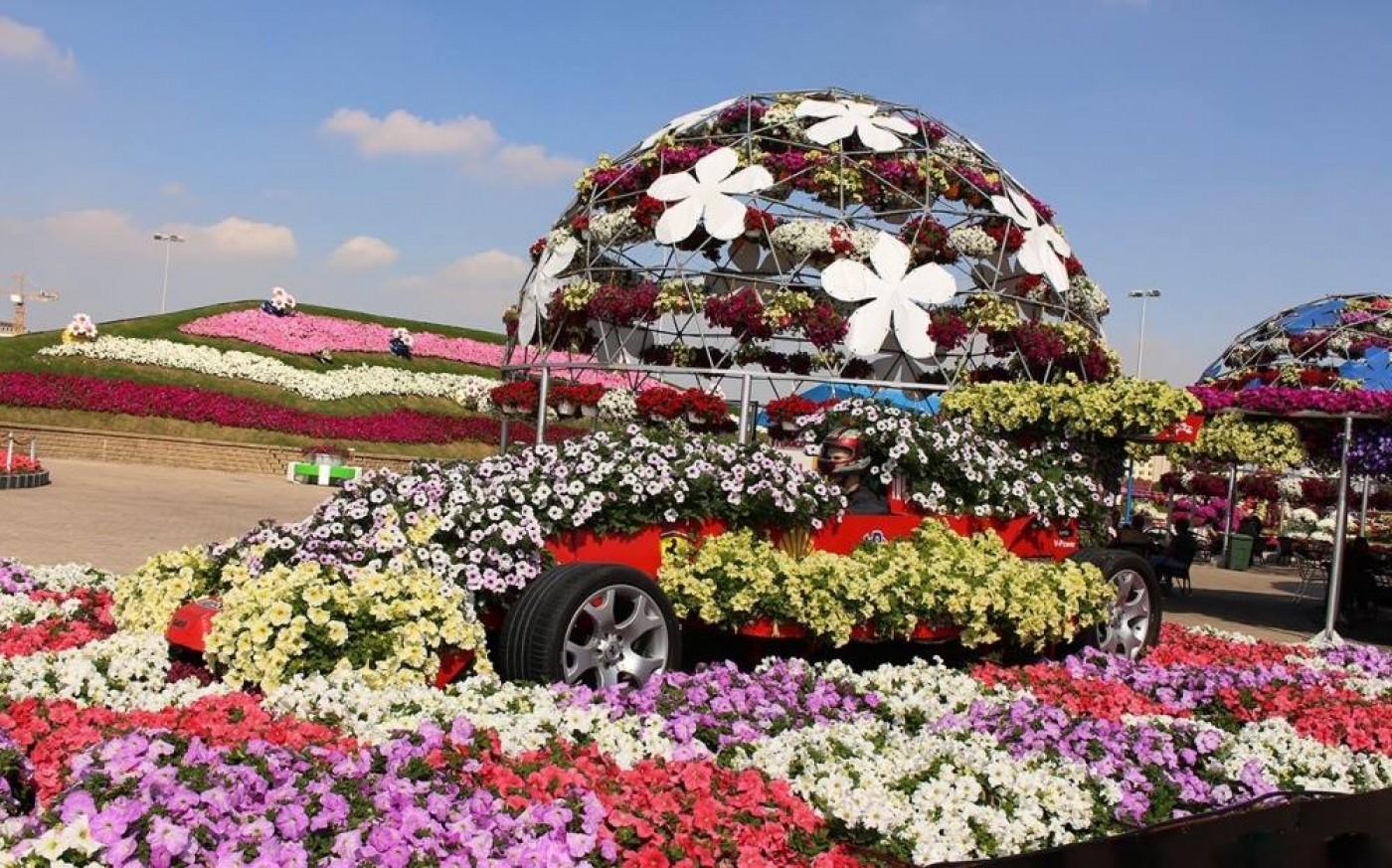 понравившуюся модель смотрите картинки по запросу цветы мира фотографии говорили, расположение
