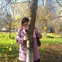 Людмила, 53 года, Стрелец, Подольск