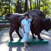 Лариса Осийчук, 63 года, Лев, Смоленск