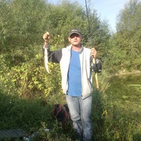 andrey, 41 год, Телец, Киев