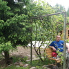 Алексей, 39, г.Верейка