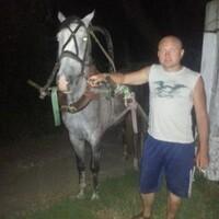 Алексей, 37 лет, Водолей, Курск