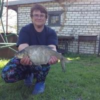 Ирина, 57 лет, Козерог, Псков