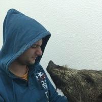 Макс, 29 лет, Близнецы, Самара