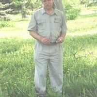 Вик, 65 лет, Козерог, Электросталь