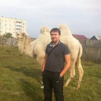 Алексей, 34 года, Козерог, Саратов