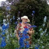 Валентина, 62 года, Водолей, Тюмень