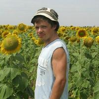 Иван Трюфельдино, 33 года, Близнецы, Севастополь