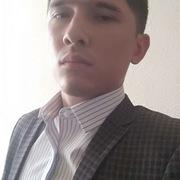 Alisher Hamidov, 24, г.Ташкент