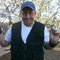 Александр, 49 лет, Стрелец, Воронеж