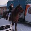 Светлана Шемелина, 56, г.Екатеринбург