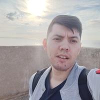 Damir, 27 лет, Лев, Казань