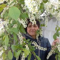 Галина, 79 лет, Овен, Москва