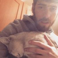 Стас, 33 года, Лев, Москва