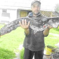 николай, 43 года, Козерог, Новгород Северский