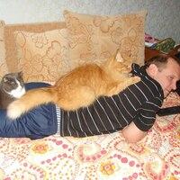 Сергей, 54 года, Скорпион, Выборг