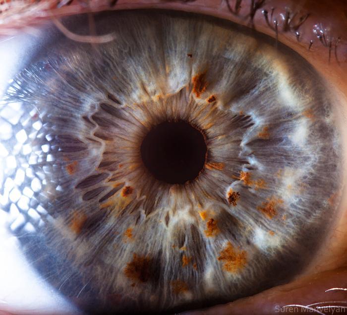 человеческий глаз в увеличении фото глотка