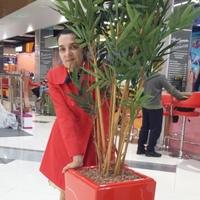 Элен, 62 года, Овен, Краснодар