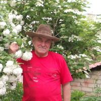 Виктор, 66 лет, Лев, Волгоград