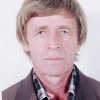 Сергей, 63 года, Дева, Томск