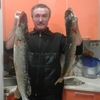 серый, 51, г.Нолинск