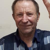 Пётр, 70 лет, Близнецы, Рязань