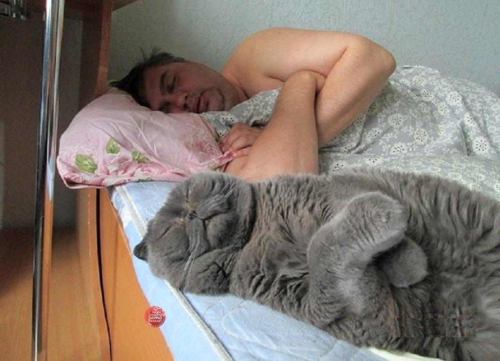 Фото все на работу с я сплю