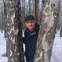 александр, 67 лет, Телец, Москва