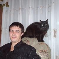 Дмитрий, 31 год, Лев, Курск