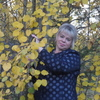 Елена, 46, г.Лесосибирск