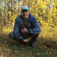 Евгений, 59 лет, Лев, Санкт-Петербург