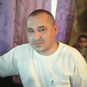 илья 41 Киев