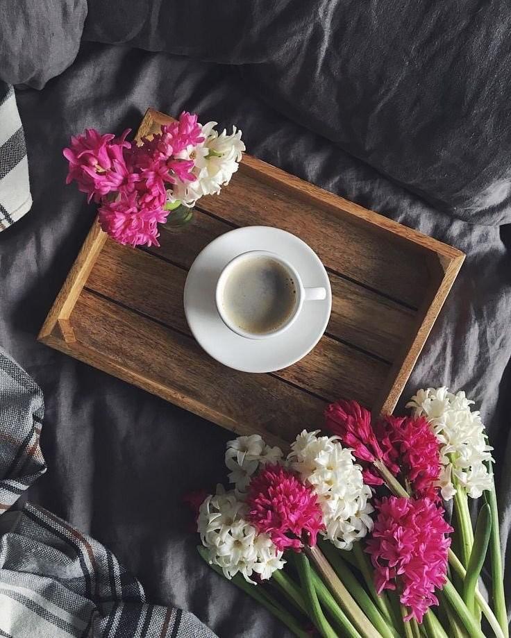 стильное утро фото хижина